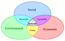 slide showing social environment