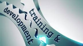 image with the words 'training and development'
