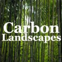image of thick green trees and the words carbon ladscape