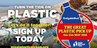 poster advertising the great plastic pick up