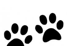 cartoon image of animal pawprints