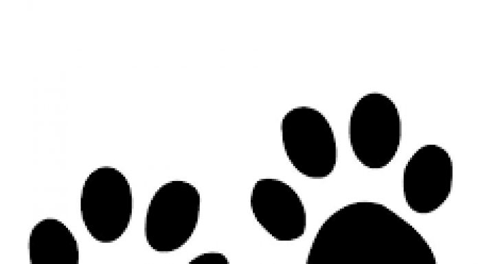 cartoon image of animal pawprints