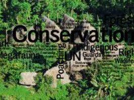 Conservation Logo