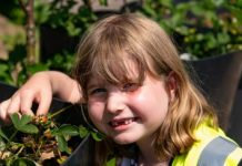 Photo of 7year old Freya helping with Wigan in Bloom