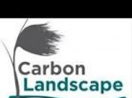 logo for carbon landscape