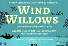 blue and white poster depicting Wind in the Willows