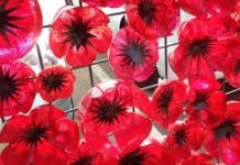 photo of poppies made with plastic bottles