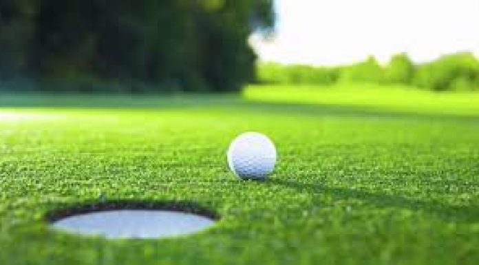 photo of golf ball near the hole on the green