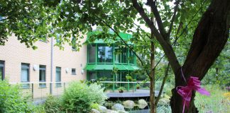 photo fo the bridge in the Hospice garden