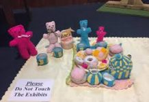 entries for the village show