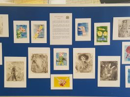 photos of the childrens art work