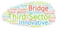 words representing third sector