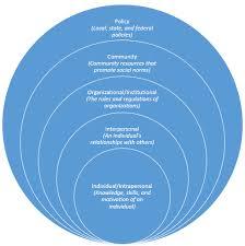 chart showing model for volunteers